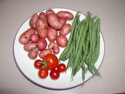 Harvest_071606