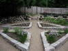 Lower_garden_all_planted_052706