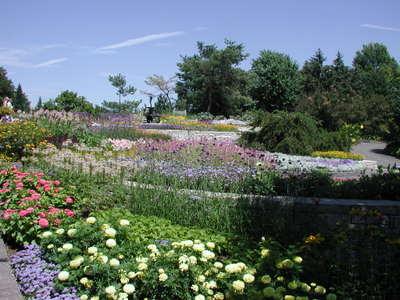 Mn_arb_annual_garden_072306