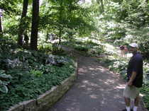 Mn_arb_bill_in_hosta_glade_072306