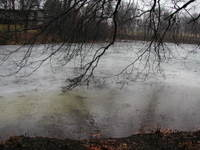 New_years_eve_pond_3_123106