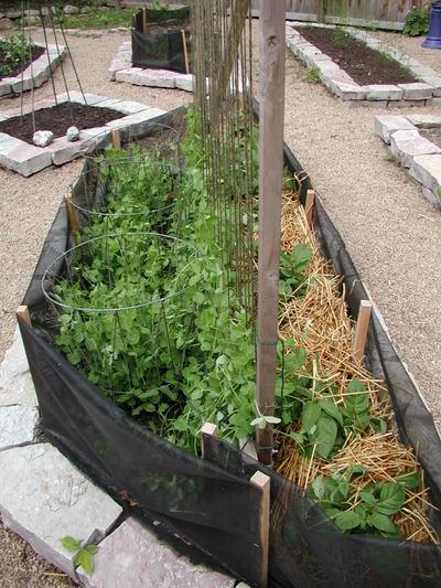 Peasbeanspotatoes_052106