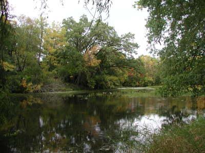 Pond_4_091906_1