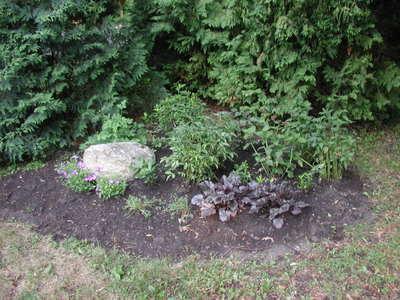 Rock_garden2_062606