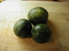 Watermelon_lantha_092006_1